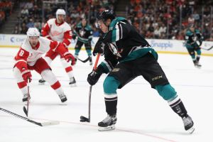 gettyimages 1047855336 Terry, Gibson Lead Ducks Past Wings 3 2 In Home Opener